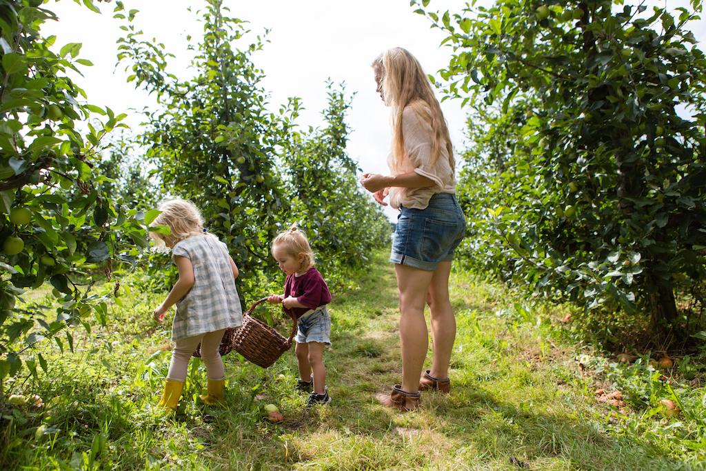 appeltje-voor-de-dorst-1