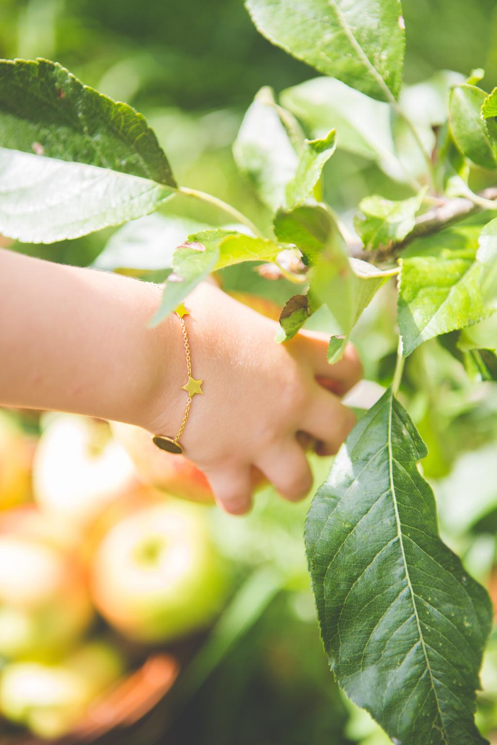 appeltje-voor-de-dorst-10