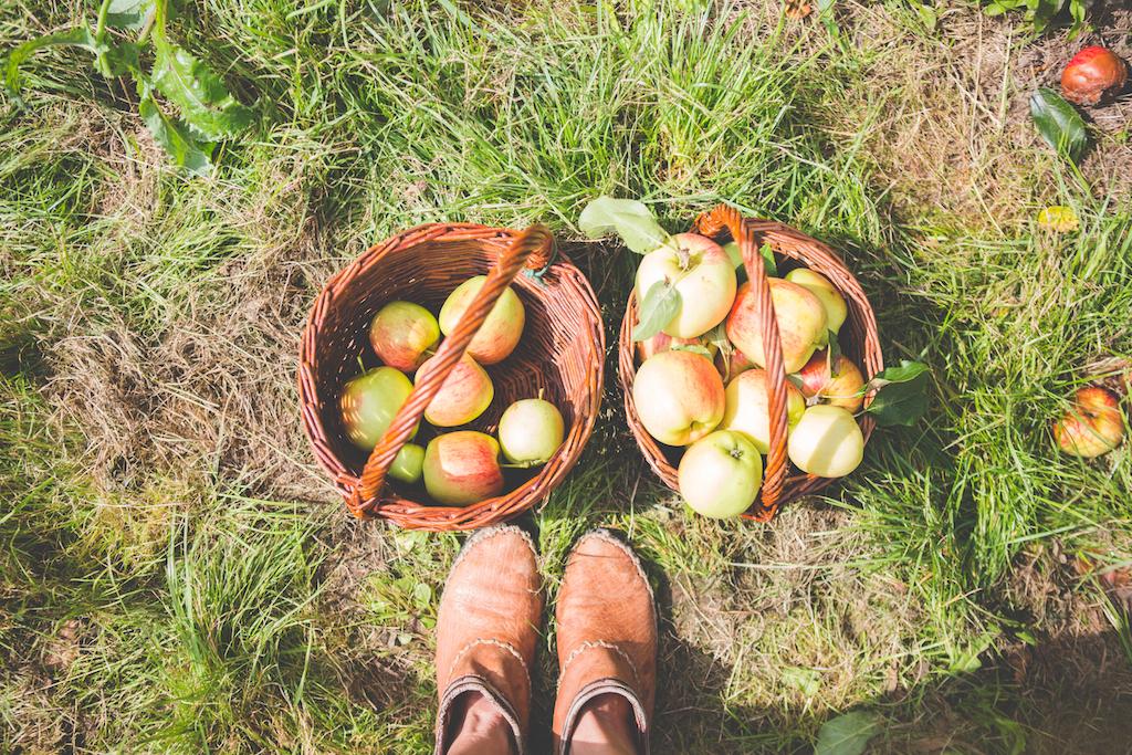 appeltje-voor-de-dorst-14