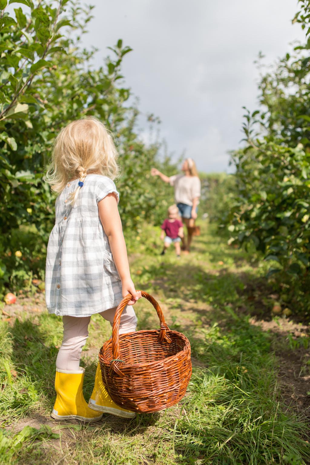 appeltje-voor-de-dorst-2