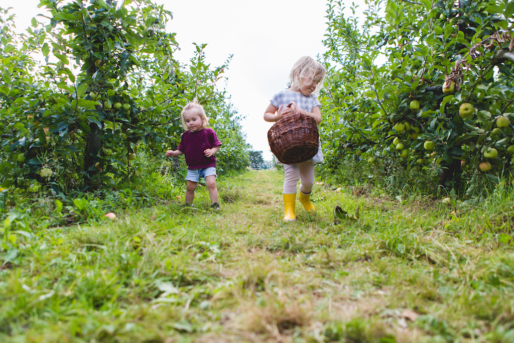 appeltje-voor-de-dorst-5