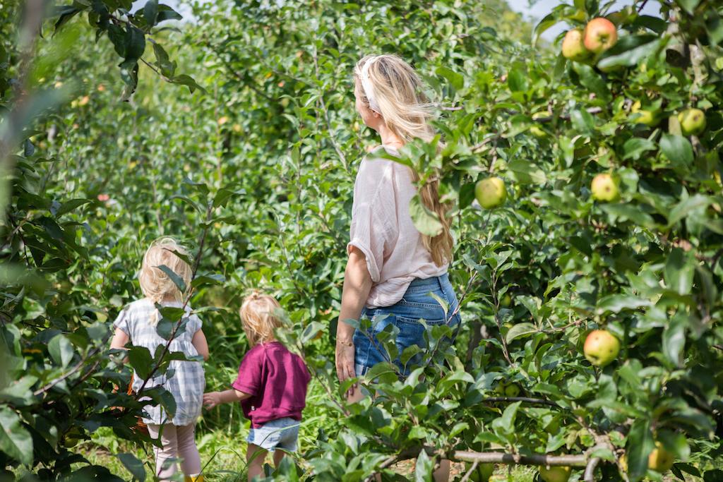 appeltje-voor-de-dorst-9